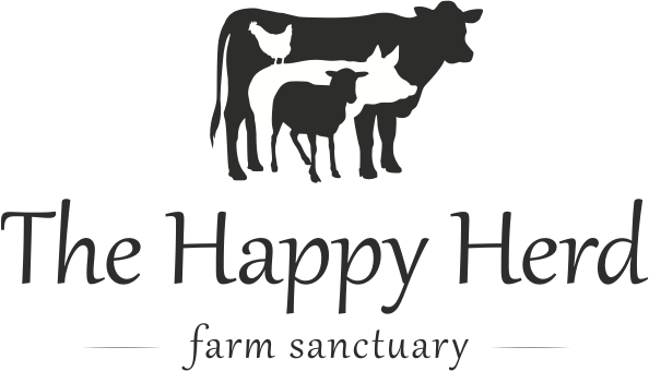 The Happy Herd Farm Animal Sanctuary